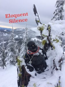 Eloquent Silence of Grey Mountain on Instagram at the Rams Head