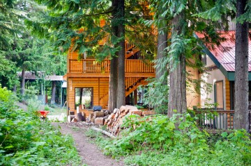 The forest at the Rams Head Inn in all its summer glory in BC